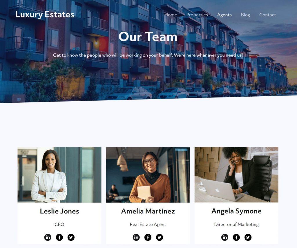 Luxury Estates team blocks